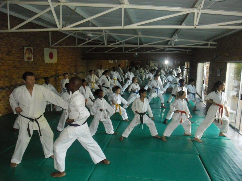 DT Karate 7