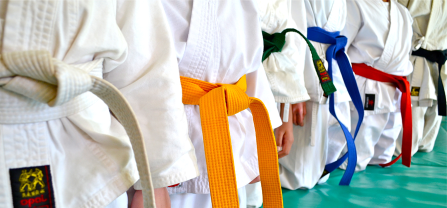 Schools and Pre-Schools Karate